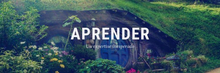 Aprender: Un Expertise Inesperado